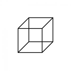 Necker Cube